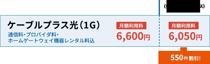 ケーブルプラス光(1G)