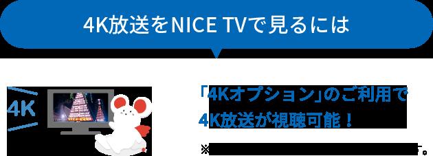 「4Kオプション」のご利用で4K放送視聴可能!